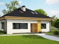 Проект дома-217